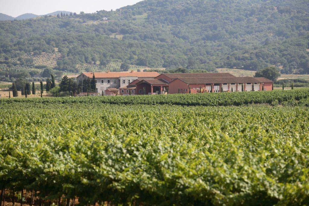 Fertuna winery