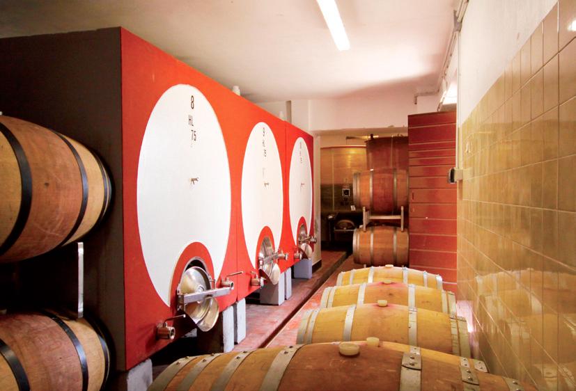 Guidi cellar