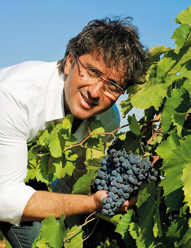 tola winery