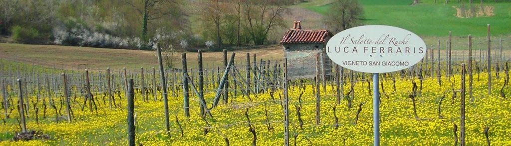 luca ferraris vineyards
